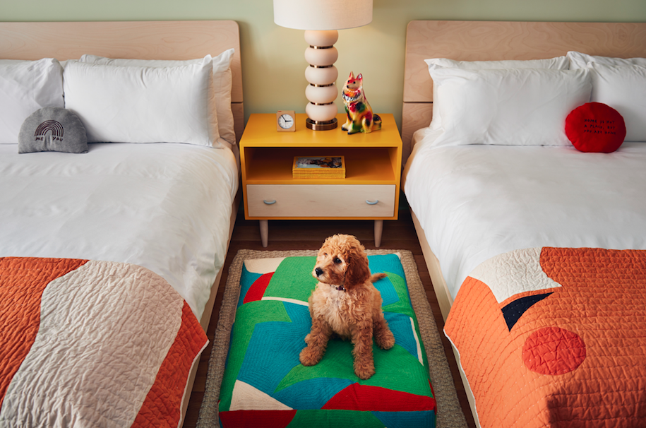 Motel room with two beds and dog on colourful rug