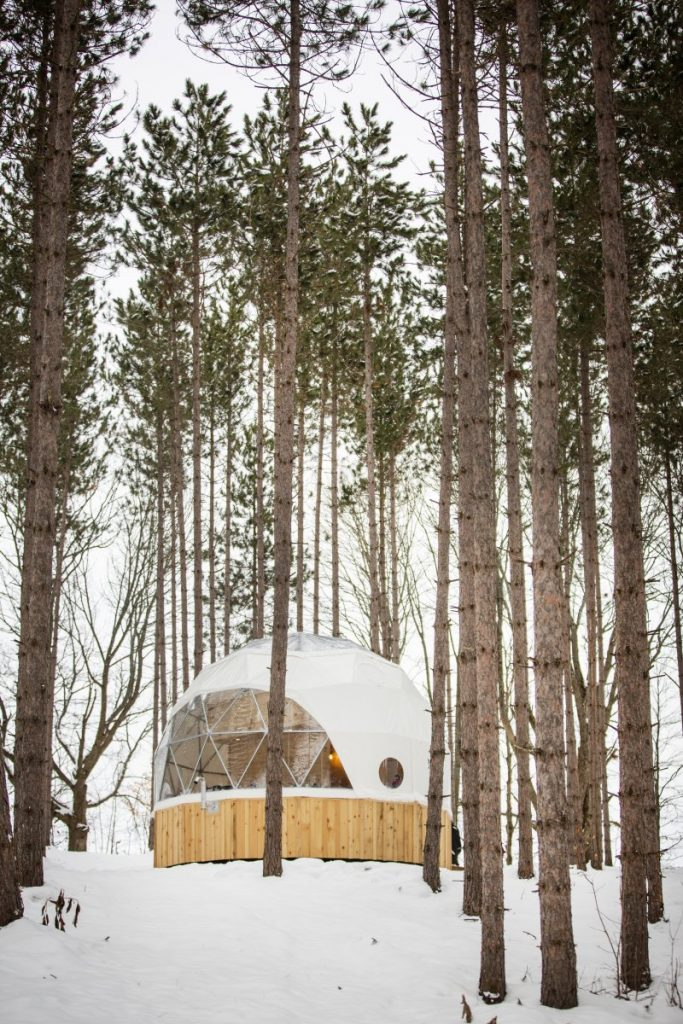 Geodesic glamping dome in forest
