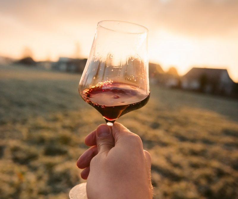 hand holding glass of red wine against sunset landscape